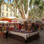 Provence – hem för solens mat